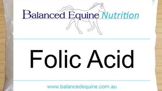 Balance Equine Nutrition, Folic acid B9 450 g