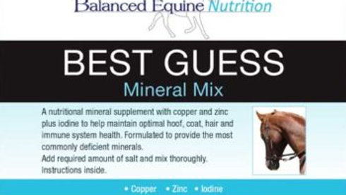 BALANCED EQUINE NUTRITION Best Guess