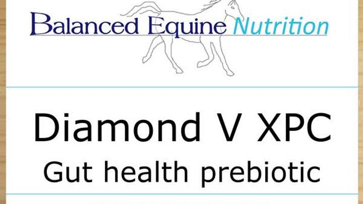Balanced Equine Nutrition, Diamond V XPC 2 kg