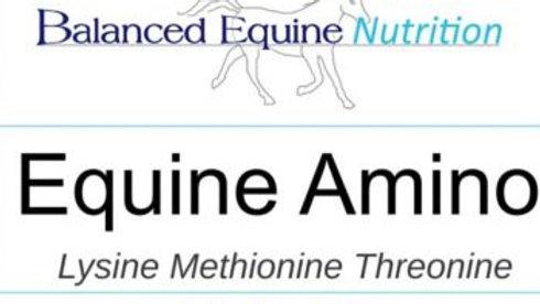 BALANCED EQUINE NUTRITION Equine Amino