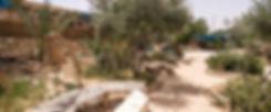 חצר-תחתונה-1.jpg