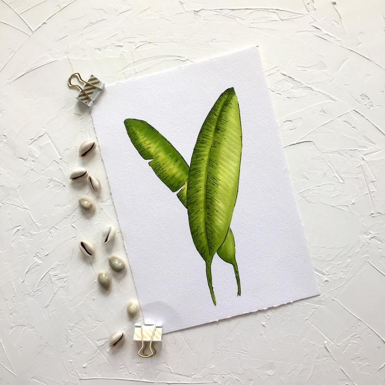 Banana Leaf 1.jpeg