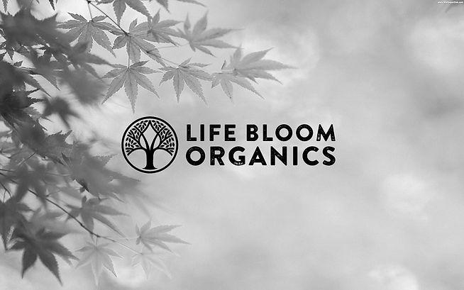 Life Bloom Organics Hero