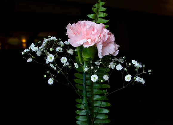 Bouquet of 10 Carnations