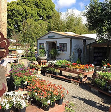 Encinitas Garden Nursery Shop near San Diego, California