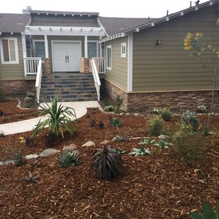 Landscape Design in Encinitas