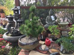 Garden-Store-Encinitas-Gardener-Gifts