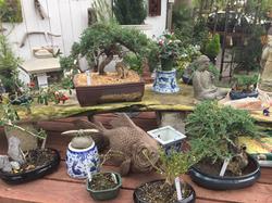 Garden-Decor-Encinitas-California