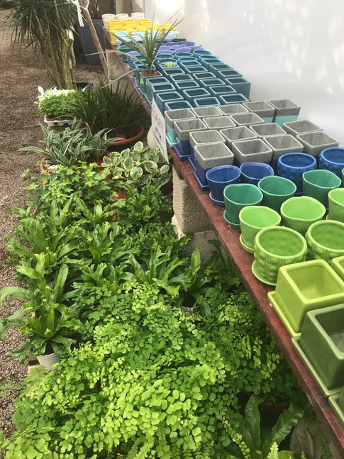 Chive Pottery for Gift Giving