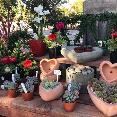 Heart-shaped pottery