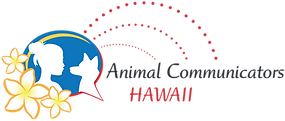 ACH_logo.png