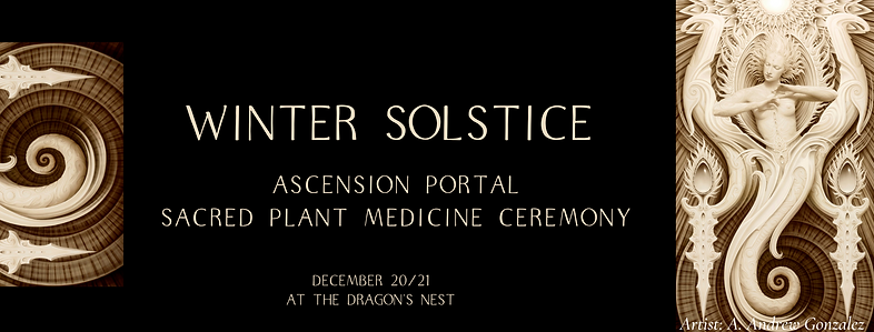 WInter Solstice .png