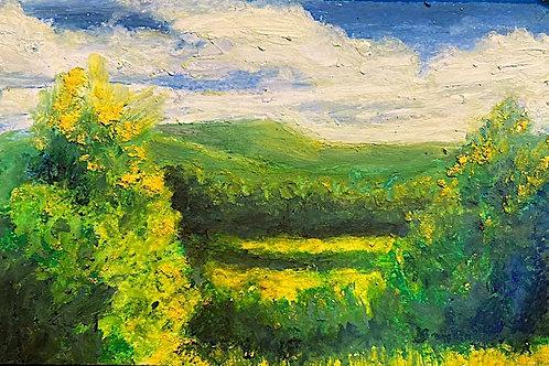BERKSHIRE MEMORIES Tanglewood View