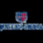 Logo_NAP_JustinSiena.png