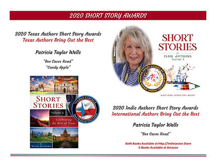 2020 Short Stories Awards.jpg