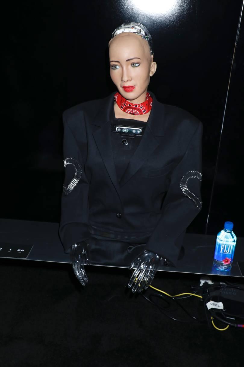 Sophia - Alexander Wang Pre-Fall 2019