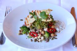 Salad - Wild Beets Kitchen -