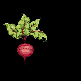 Wild Beets Kitchen logo