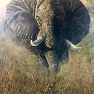 Elephant in High flow acrylics.jpg