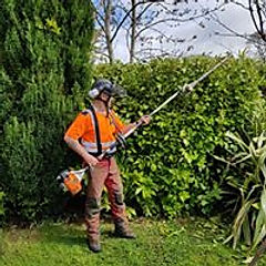 hedge trim.jpg
