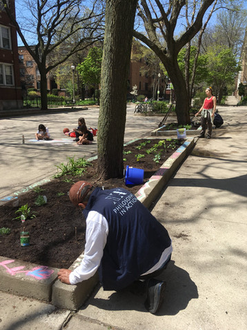 Giving back to Earth - Plant a community garden!