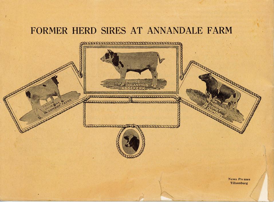 Annandale Farm Catalogue