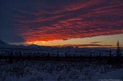 Shutt_Alaska-5