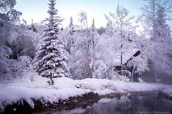 Winter_Wonderland_Print-1