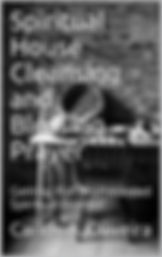 BookCoverPreview 2.jpg