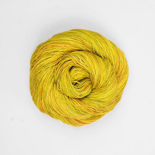 Monarch Spring Yellow
