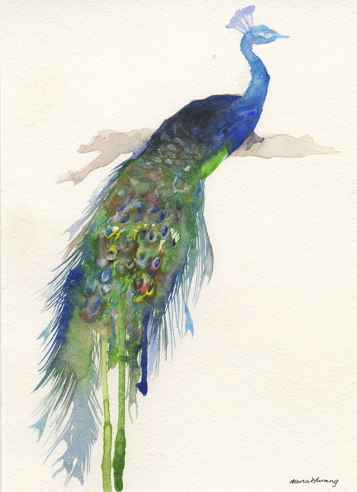 Peacock (2013).jpg