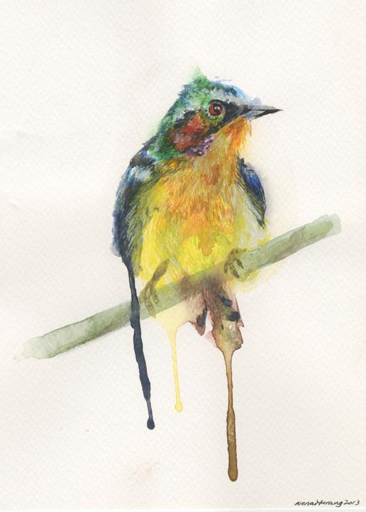 Yellow Sunbird (2013).jpeg