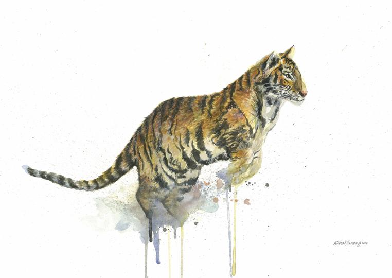 Balanglibun Tiger (2014).jpg