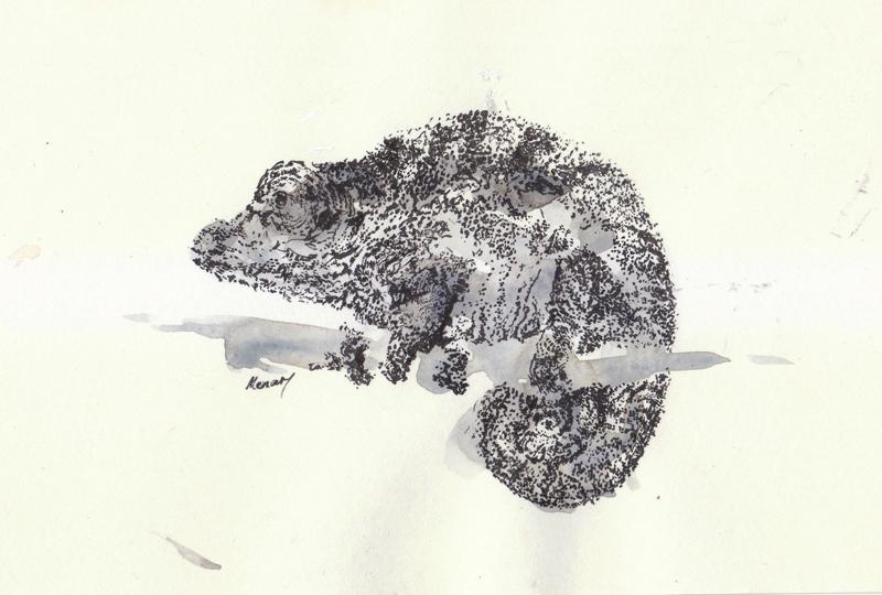 Chameleon (2014).jpg