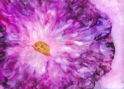 Bursting with Bloom