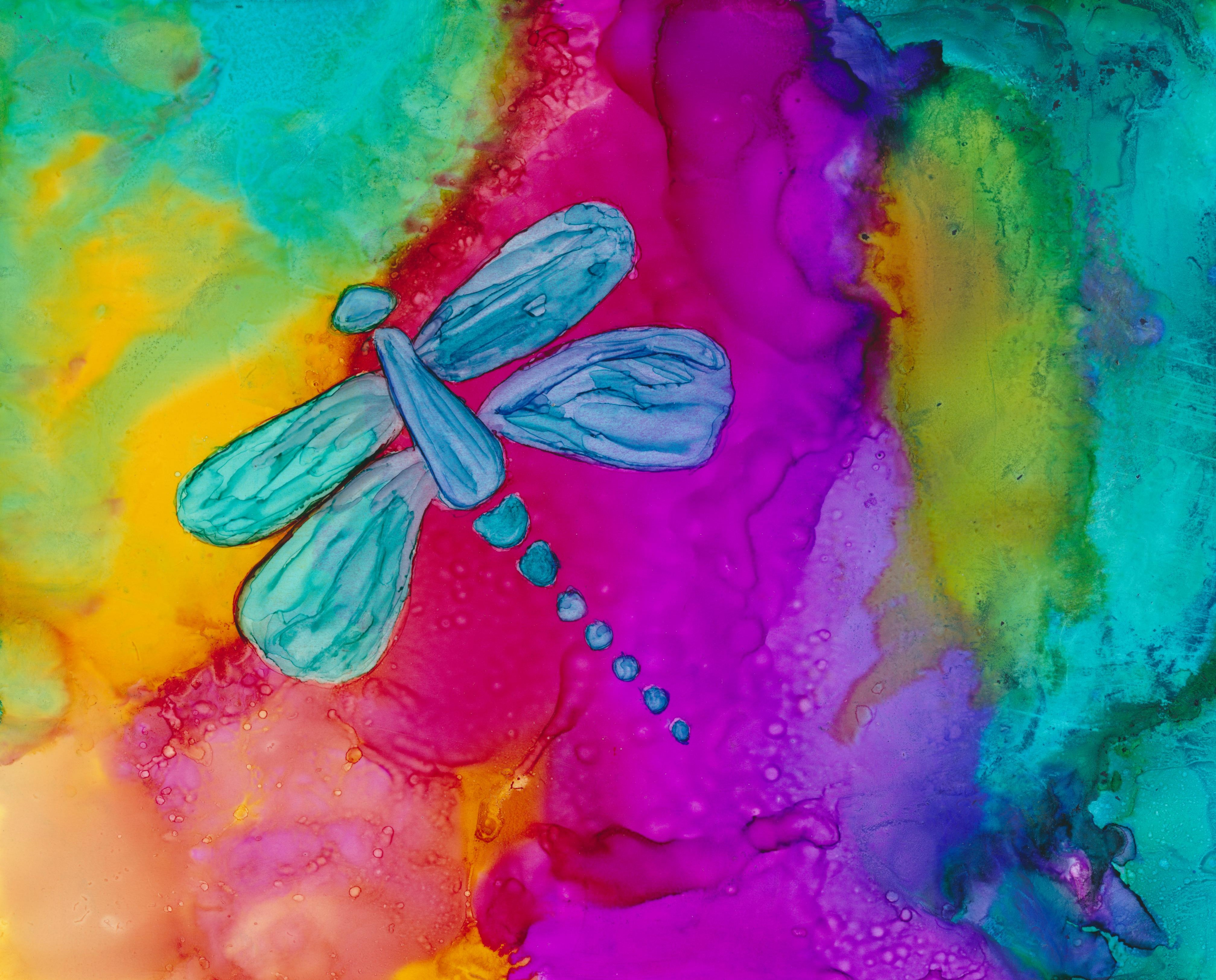 Dragonfly Rainbow