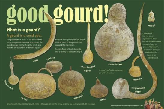 what-is-a-gourd.jpg