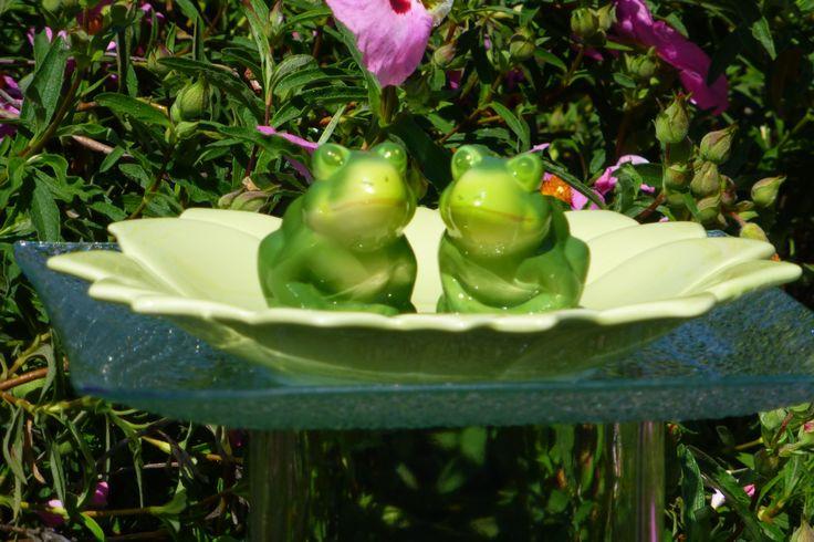 Kermit and Keret.jpg