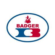 iFESSAR_Partner_BADGER.jpg