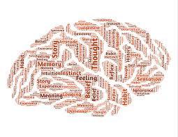 zones du cerveau en jeu dans le souvenir des reves