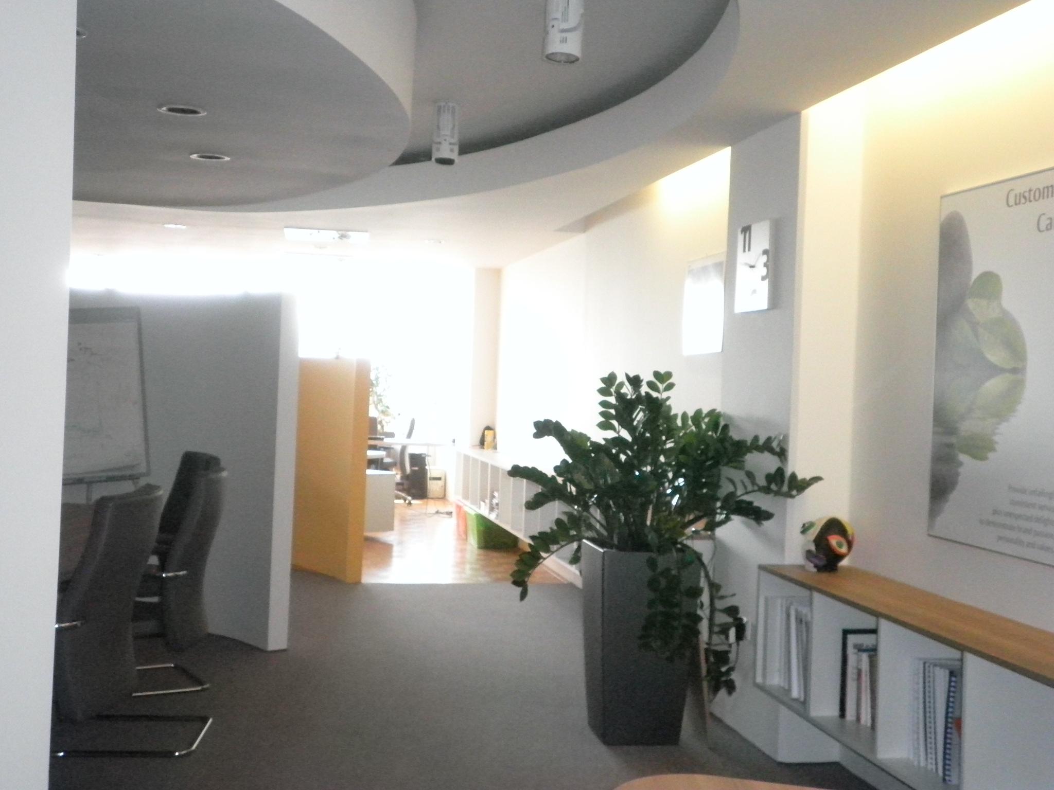 Modern coworking prostor
