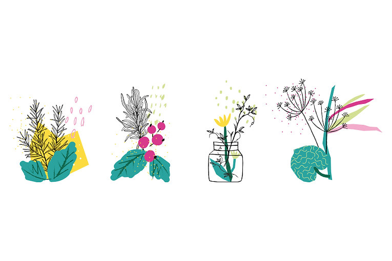 Floramedicina_3.jpg