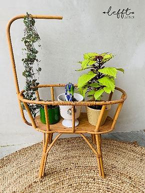 Rotan planten (poppen) wieg