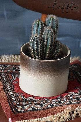 Vintage beige pot