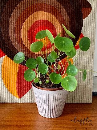 Vintage Pot Adco Ribbel Grijs
