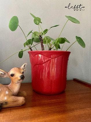 Scheurich Vintage Pot 915-16
