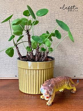 Vintage Erica Pot 1015/2 Groen