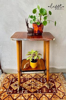 Vintage Plantentafel uit De Jaren 60