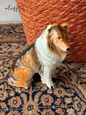 Lassie Vintage Beeld