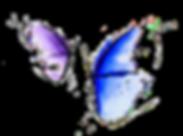 logo studio MioRiab.png